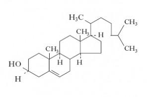 Molecola di colesterolo
